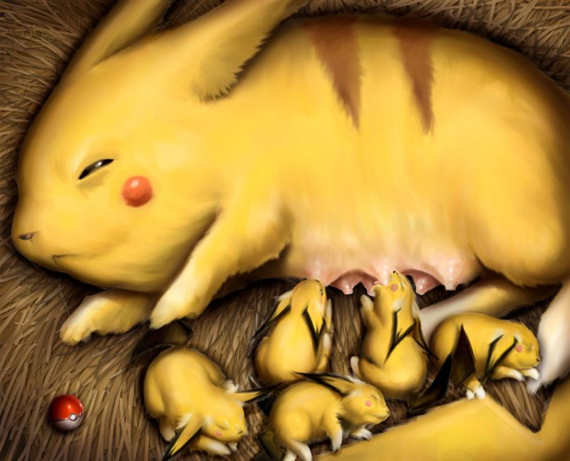 http://xorsyst.com/wp-content/uploads/2008/04/the-pikachu-mom.jpg